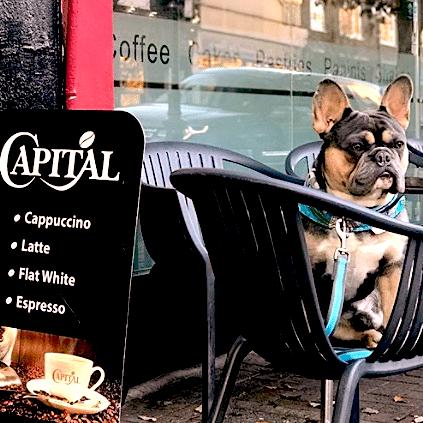Dogsand coffee